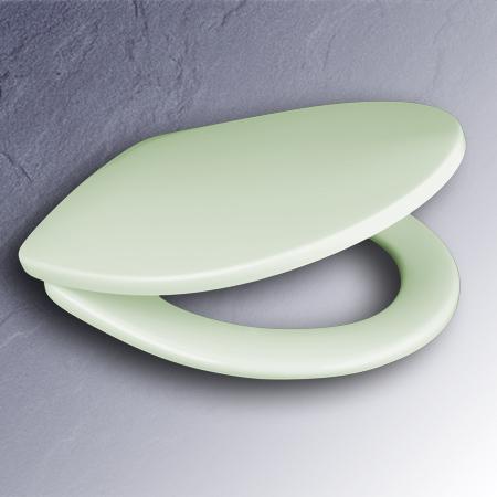 pressalit wc sitz 3000 kaspisch gr n scharniere edelstahl. Black Bedroom Furniture Sets. Home Design Ideas
